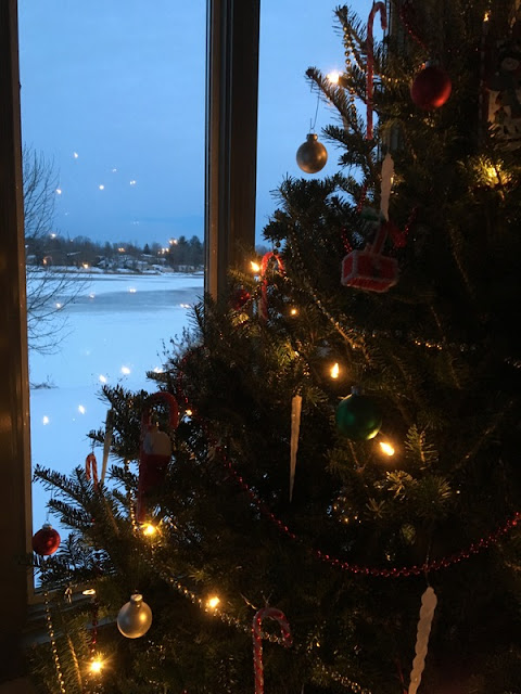 A lighted Christmas tree, in front of a window with a snow covered river outside