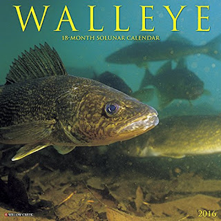 Engbretson Underwater Photography: Looking for a 2016 ...  Engbretson Unde...