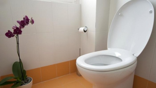 https://caramengatasisaluranpipaairmampet.blogspot.com/2019/01/cara-mengatasi-septic-tank-tersumbat.html