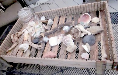 wooden crate with shells
