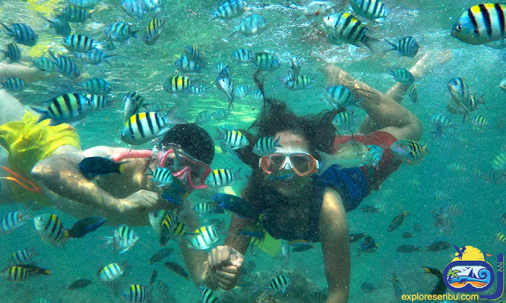 sport snorkeling pulau pramuka