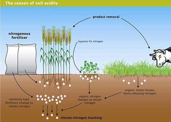 soil water crop relationship pdf writer