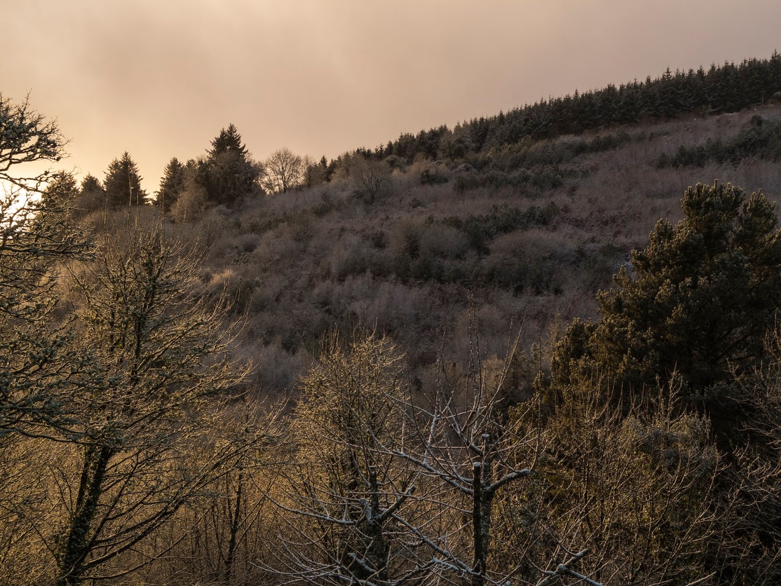 Snowy mountain side in North County Cork during a sunset.