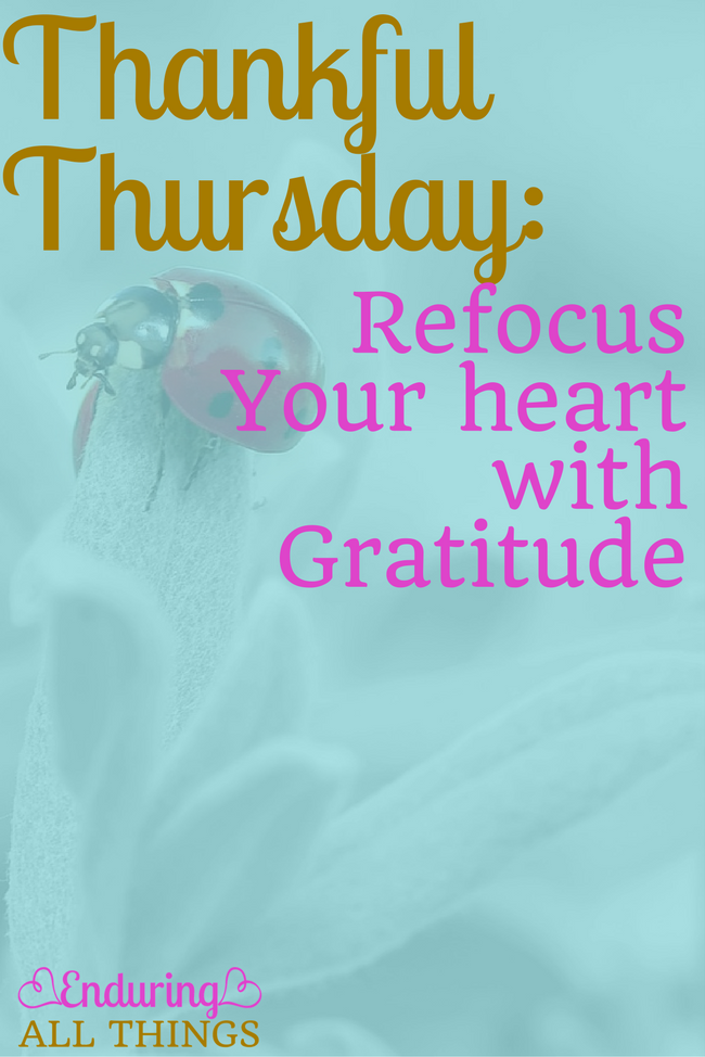 Thankful Thursday Party: Refocus your Heart with Gratitude: Things I'm thankful for about my husband