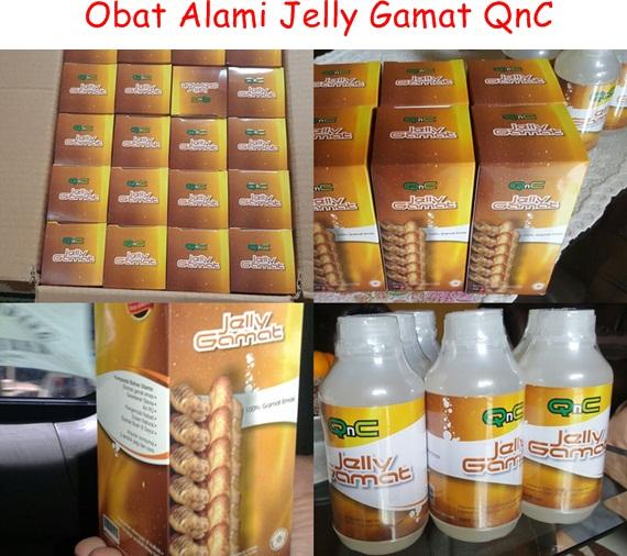 Obat Alami Jelly Gamat QnC