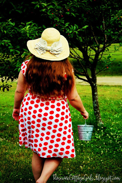 Brianna in a white dress with red polka dots picking cherries with a metal bucket (c) RosevineCottageGirls.com