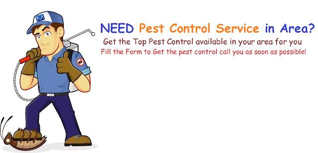 San Antonio Pest control service
