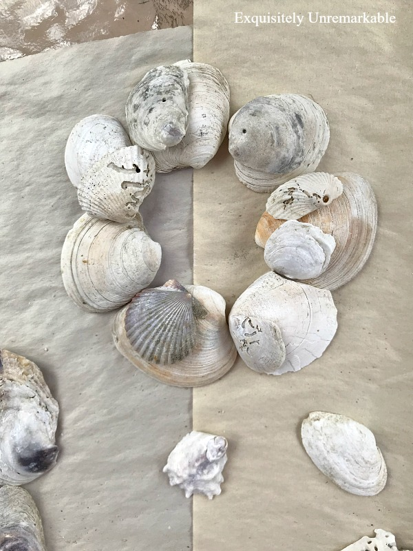 Making A Shell Ornament from beach shells