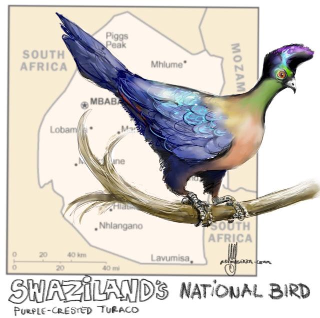 Swaziland's national bird Painting by Ulf Artmagenta