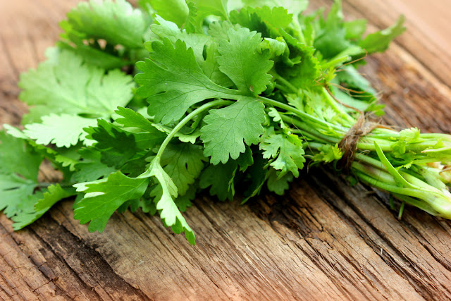 You Won't Believe How Cilantro Can Make You Healthier And Prevent Diseases