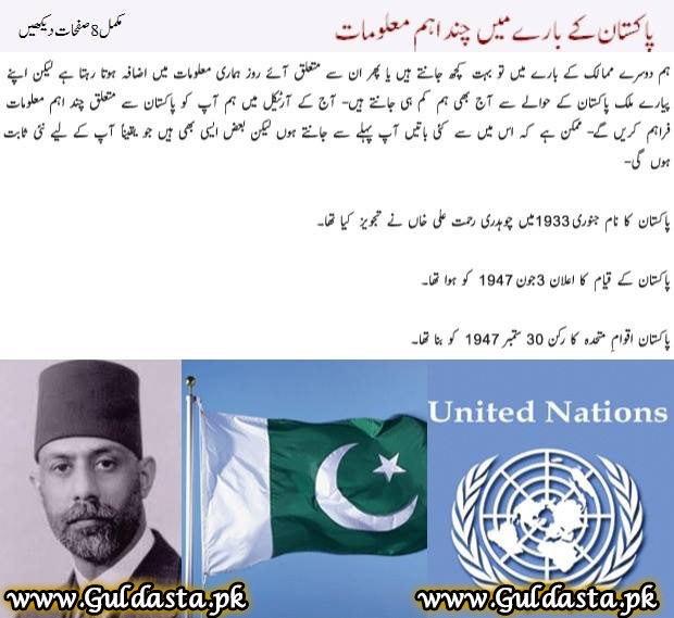 Essay on national flag of pakistan in urdu - Sputnik