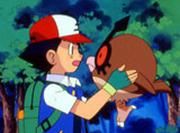 Ash con Hoothoot