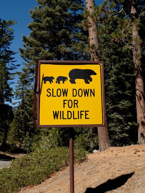 Señales para preservar la vida salvaje en Sequoia National Park