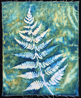 Wet Cyanotype_Sue Reno_Image 68