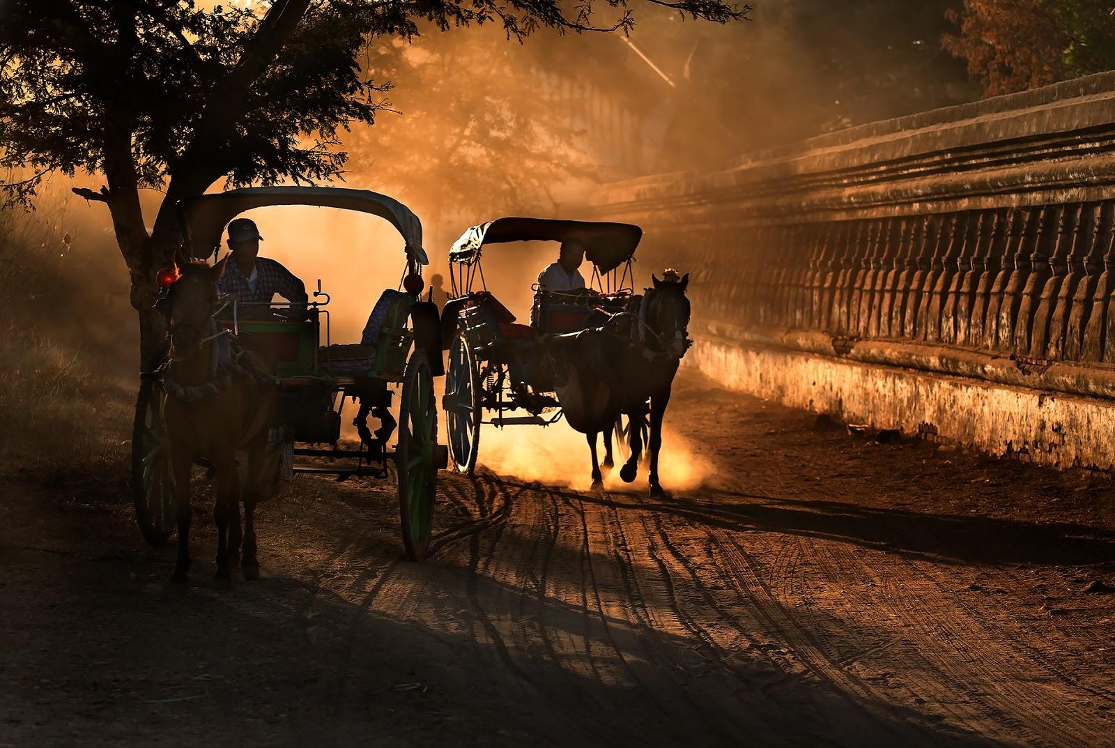 droga,bagan,zaprzęgi konne,ludzie,birma