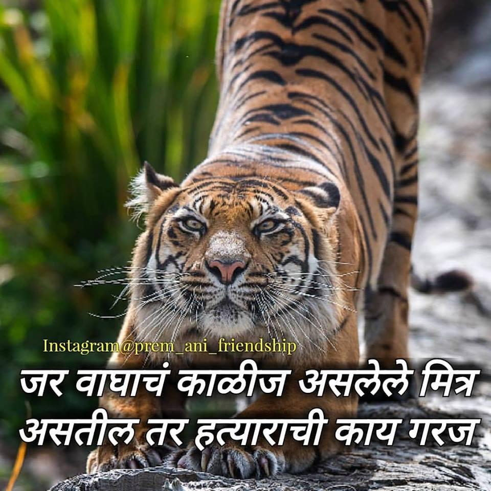 marathi maitri status images friendship day