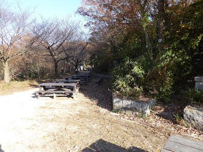 ドングリの小路 白旗池