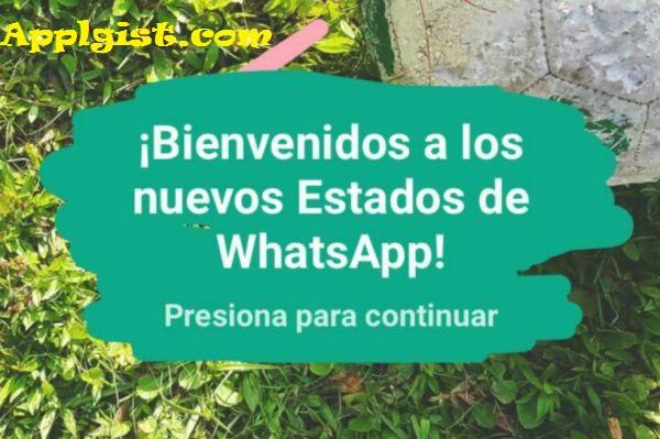 ¿Aún no sabe cómo actualizar el nuevo estado de WhatsApp? Aquí le enseñamos