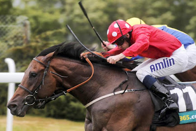 Garswood in action (sire)