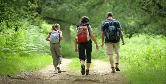 Cómo Iniciar Un Programa De Caminata