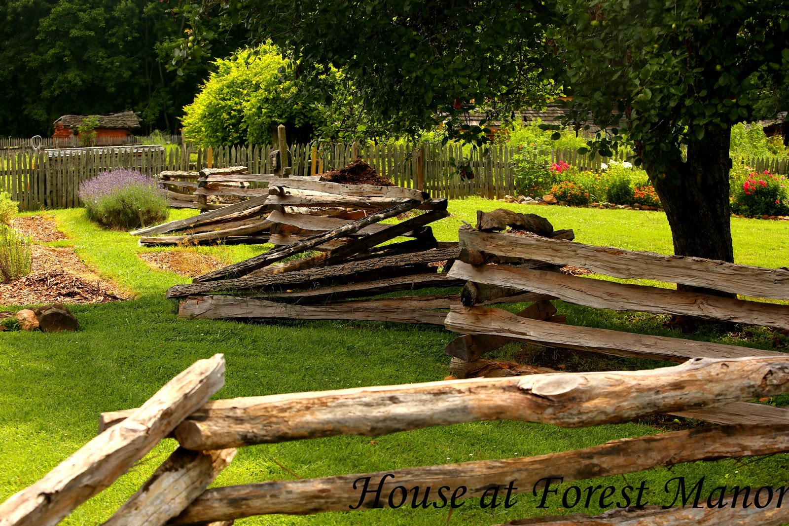 House at Forest Manor: The Gardens at Bethabara Park