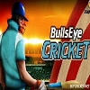 Play BullsEyes cricket game