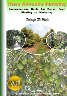 avocado farming in Kenya pdf