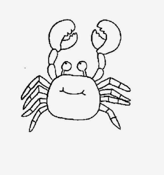 Cute Ocean Animals Coloring Pages 1080p