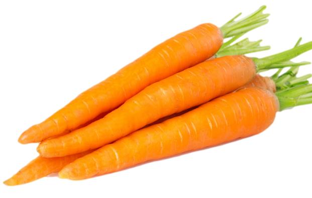 Makanan yang Bisa Membunuh Parasit dalam Usus