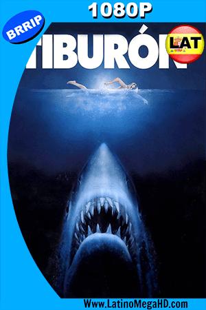 Tiburón (1975) Latino HD 1080P ()