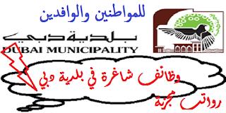 وظائف شاغرة في بلدية دبي للوافدين والمواطنين برواتب مجزية جدا