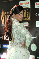 Poonam Kaur in Beautiful Floor Length Gown at IIFA Utsavam Awards 2017  Day 2  Exclusive 04.JPG