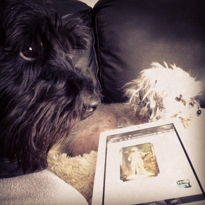 A black mini schnauzer, Duffy, and a silver poodle, Murchie, sit next to one another. Duffy's face is very close to the camera. Between them is a white Kobo with an indistinct image of a gold-hewed statue of a woman on its screen.