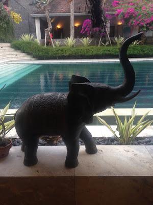 aide leit-lepmets indoneesia inspiratsioon elevant