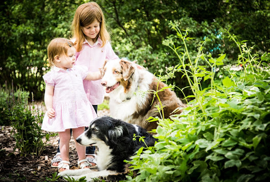 SUGAR, SPICE AND EVERYTHING NICE: THE FOGELS | WICHITA FALLS FAMILY AND PETS PORTRAITS PHOTOGRAPHER