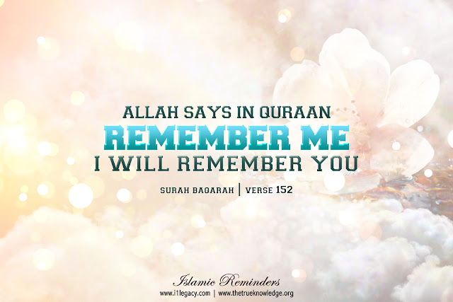 Allah Quotes - Allah says in Quran
