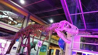 Tiranosaurio REX en MALOKA 1