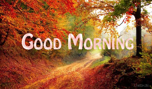 Good Morning wishes and greetings on red leaves