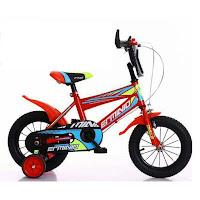 Sepeda Anak Erminio 234 BMX 12 Inci