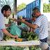 Alimentos mais frescos e saudáveis na Feirinha da Agricultura Familiar em Aracruz