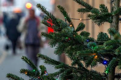 karácsony, kereszténység, ünnep, Törökország, Isztambul, Istanbul Lisesi
