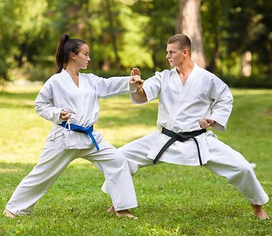 Martial art exercise