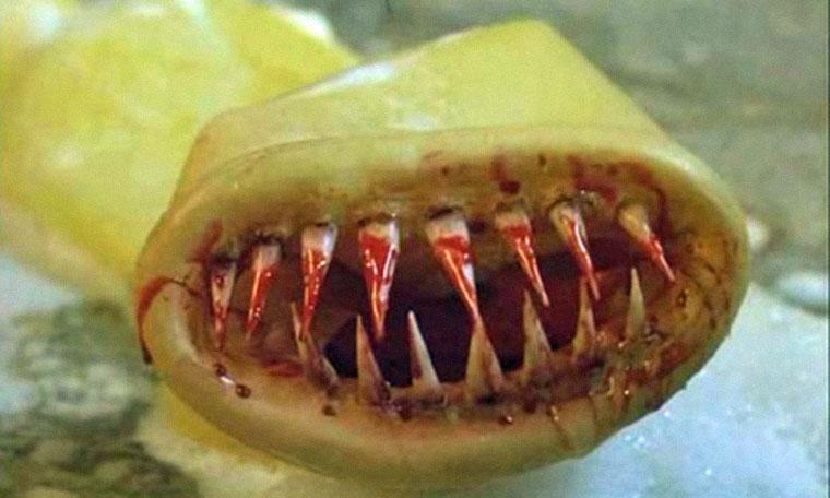 Kondom des Grauens (1996). Quelle: DVD Screenshot (Ascot Filmverleih)