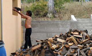 What would a wood chucker do...