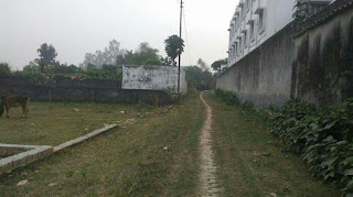 Plot in Padri Bazar Gorakhpur, Land in Padri Bazar Gorakhpur, Property in Padri Bazar Gorakhpur, Plot for Sale in Padri Bazar Gorakhpur, Residential Plots in Padri Bazar Gorakhpur, Padri Bazar Gorakhpur, Padri Bazar, Real Estate Agent in Padri Bazar Gorakhpur, Property Dealer In Padri Bazar Gorakhpur, Plot Padri Bazar, Plot in Gorakhpur Padri Bazar