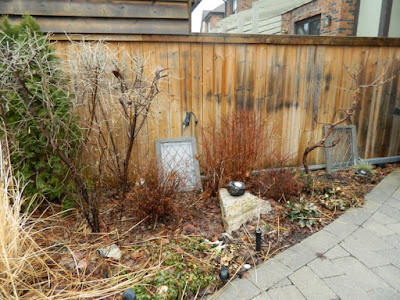 Leaside Back Garden Spring Cleanup Before by Paul Jung Gardening Services--a Toronto Organic Gardening Company
