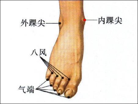 內踝尖穴位 | 內踝尖穴痛位置 - 穴道按摩經絡圖解 | Source:zhongyibaike.com