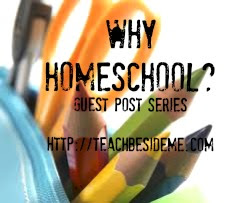 Guest Post Series
