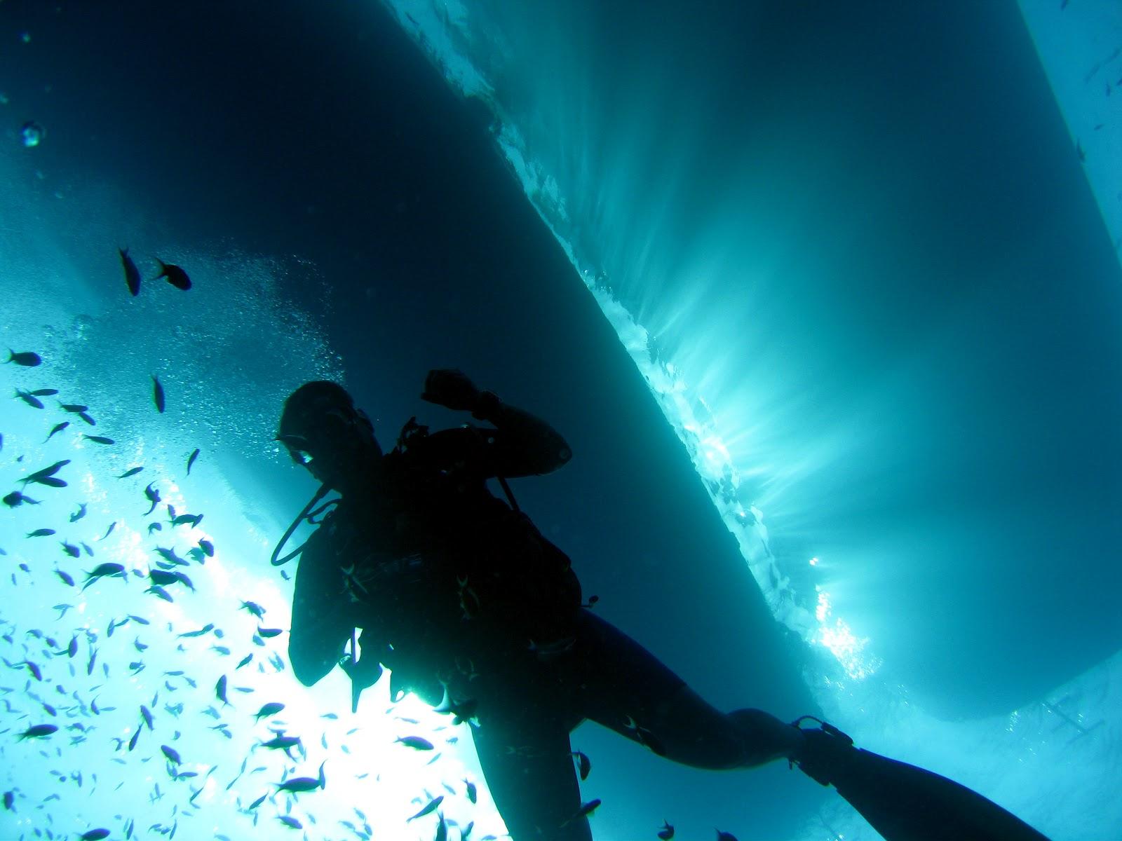 https://i0.wp.com/3.bp.blogspot.com/-jHf_Ap1Nw2M/UFrENi_GR6I/AAAAAAAAANk/fsyAR4-YRA4/s1600/scuba-diver.jpg