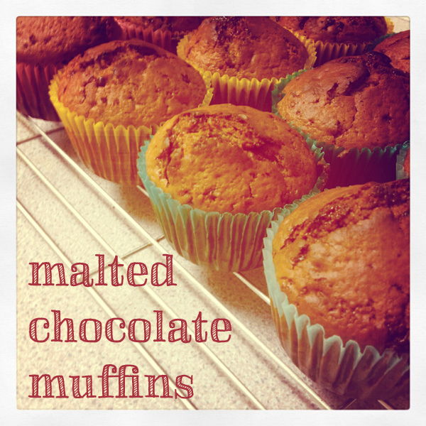 Malted Chocolate Muffins